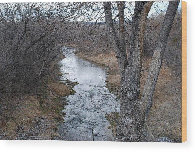Santa Fe Wood Print featuring the photograph Santa Fe River by Rob Hans