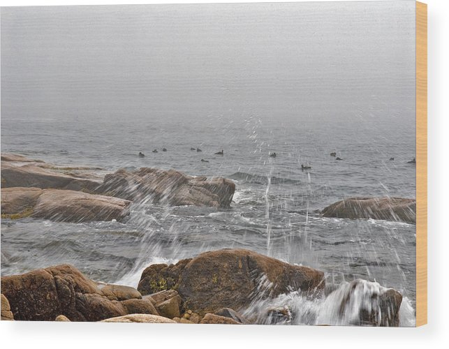 Landscape Wood Print featuring the photograph Sea Spray In Fog by Jack Goldberg