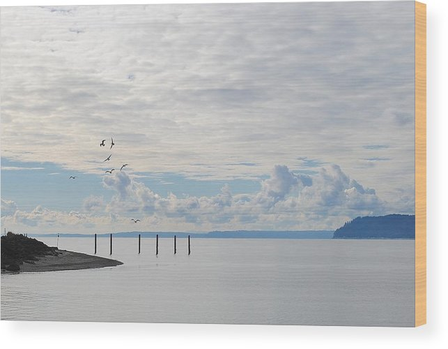 Mukilteo Lighthouse Wood Print featuring the photograph Seagulls Over Admiralty Inlet 2 by Katy Granger
