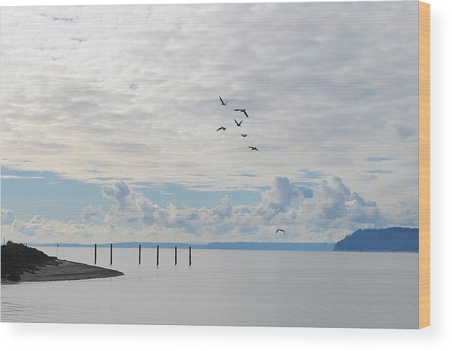 Mukilteo Lighthouse Wood Print featuring the photograph Seagulls Over Admiralty Inlet by Katy Granger