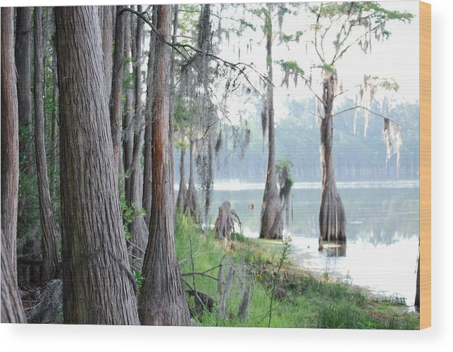 Nature Wood Print featuring the photograph Shores Of Compass Lake by Peter McIntosh