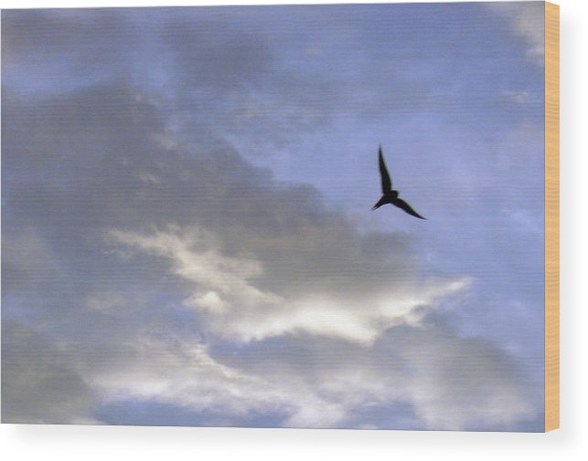 Cloud Wood Print featuring the photograph Sky16 by Mikael Gambitt