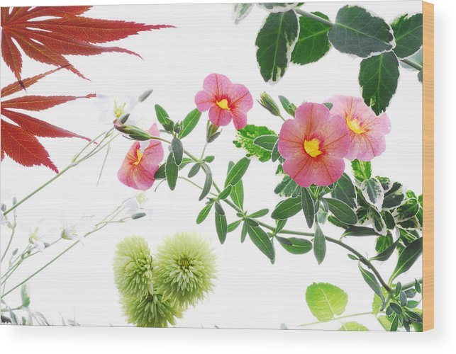 Spring Photo Wood Print featuring the photograph Spring Tapestry by Panos Trivoulides
