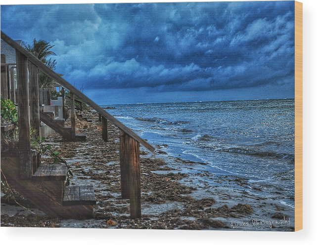 Stormy Wood Print featuring the photograph Stormy Backyard by Allen Williamson