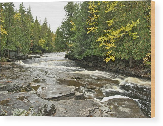 Michigan Wood Print featuring the photograph Sturgeon River by Michael Peychich