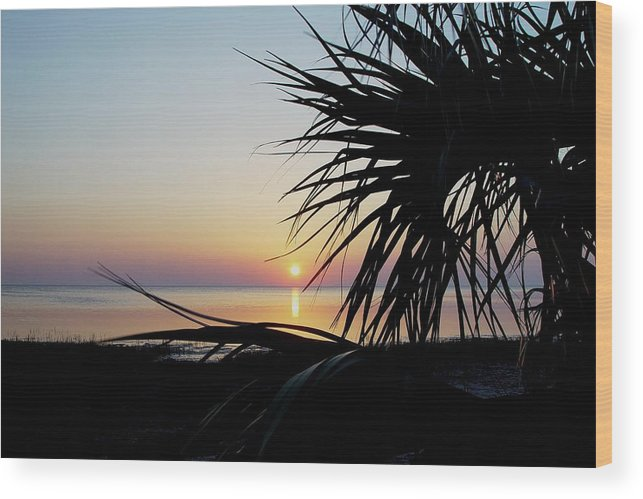Sunset Wood Print featuring the photograph Sun Touched by Debbie May