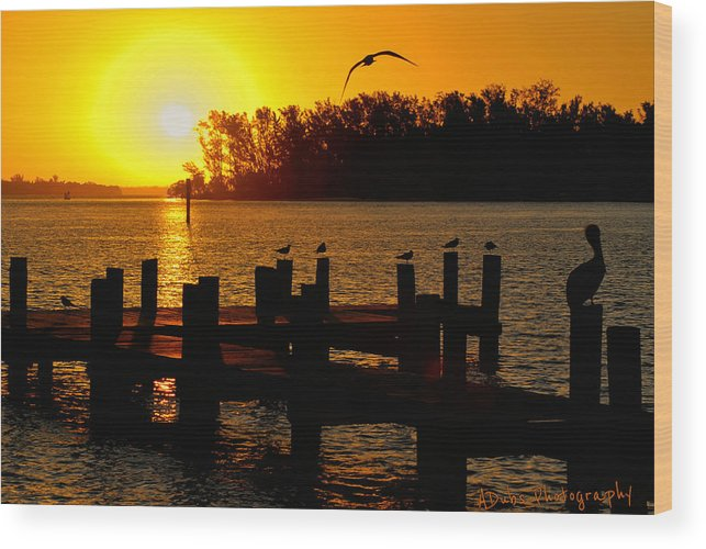 Boat Wood Print featuring the photograph Sunrise At The Boat Launch by Allen Williamson