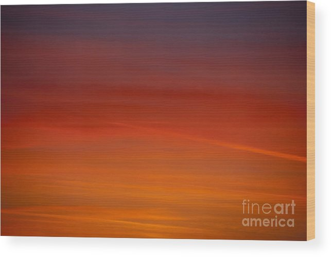 Sunset Wood Print featuring the photograph Sunset by Elaine Hillson