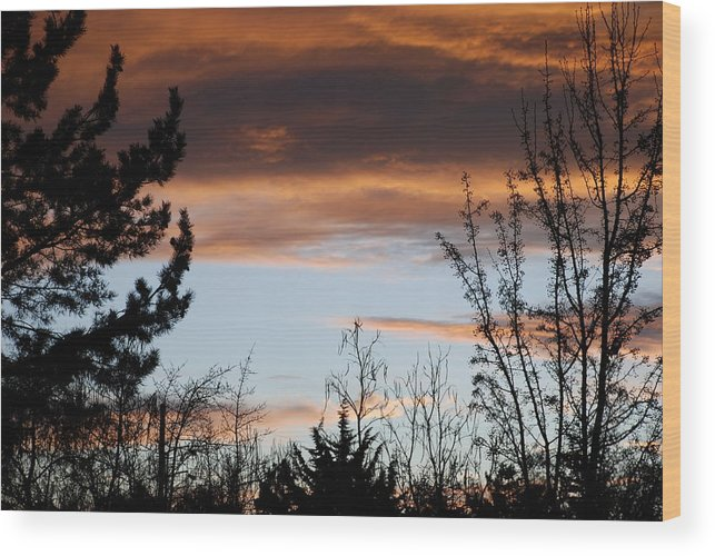 Sunset Wood Print featuring the photograph Sunset Thru The Trees by Rob Hans
