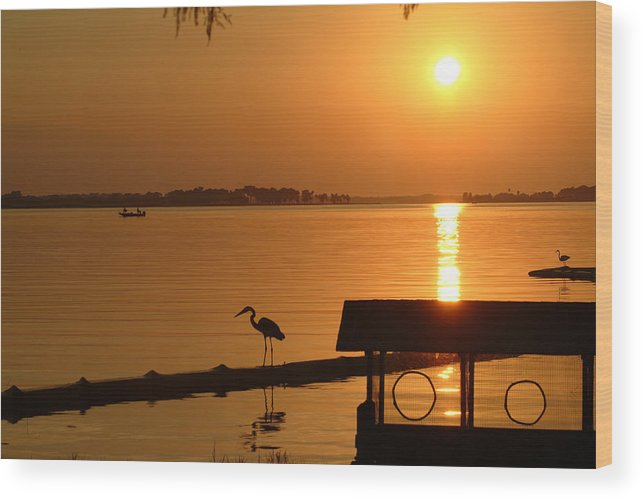 Sunset Wood Print featuring the photograph Sunsey On Lake Dora by Charles Ridgway