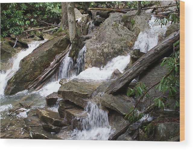 Water Wood Print featuring the photograph Swallow Falls by Heather Green