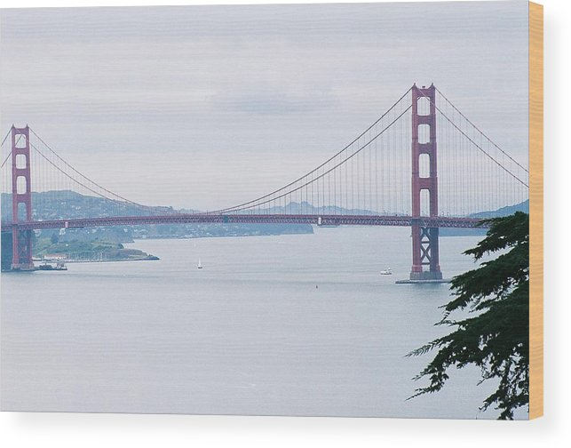 Landscape Wood Print featuring the photograph The Golden Gate by Edward Wolverton