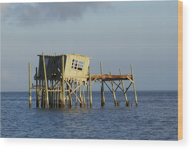 Seascape Wood Print featuring the photograph The Honeymoon Suite by Debbie May