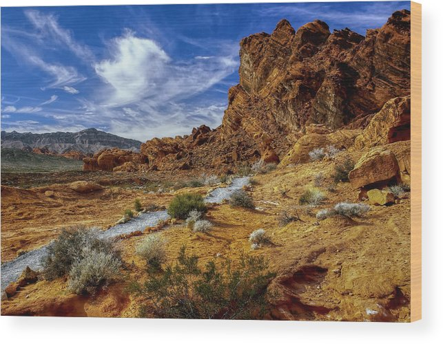 Landscape Wood Print featuring the photograph The Path by Stephen Campbell