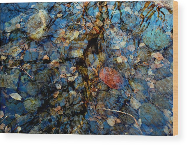 Pond Wood Print featuring the photograph The Pond In Autumn by Marilynne Bull