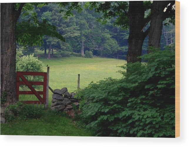 Scenic Wood Print featuring the photograph The Red Gate by Lois Lepisto