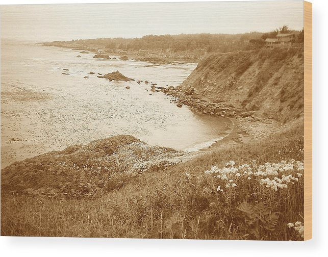 Seascapes Wood Print featuring the photograph The Victorian On The Bluff by Maggie Cruser