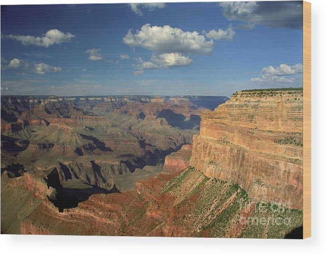 Grand Canyon Wood Print featuring the photograph This Is My Father's World by Kathy McClure