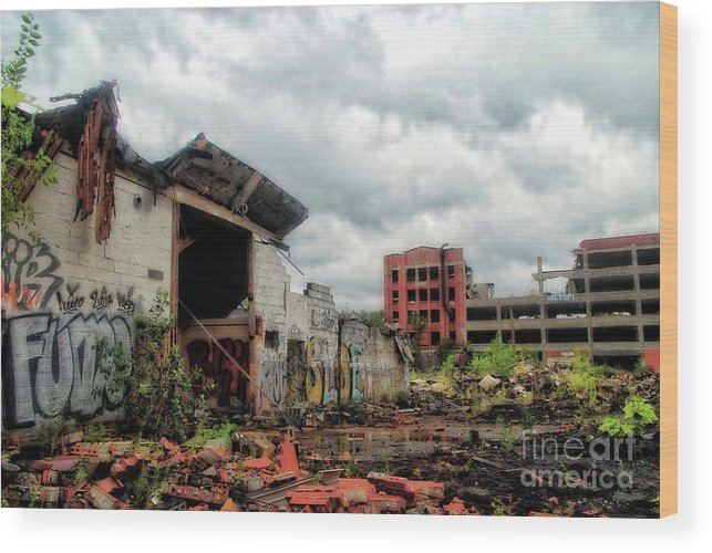 Buildings Wood Print featuring the photograph Apocalypse Detroit 2 by Walter Neal