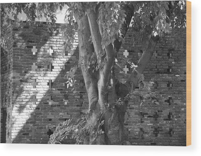 Trees Wood Print featuring the photograph Trees And Brick Crosses by Rob Hans