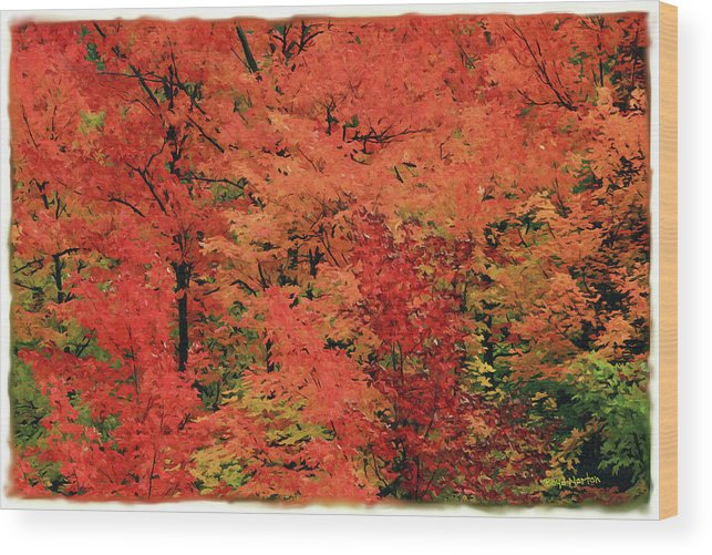 Landscape Wood Print featuring the mixed media Vermont Autumn by Boyd Norton