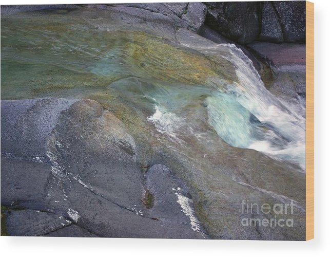 Tropical Wood Print featuring the photograph Water Flow by Kerryn Madsen- Pietsch