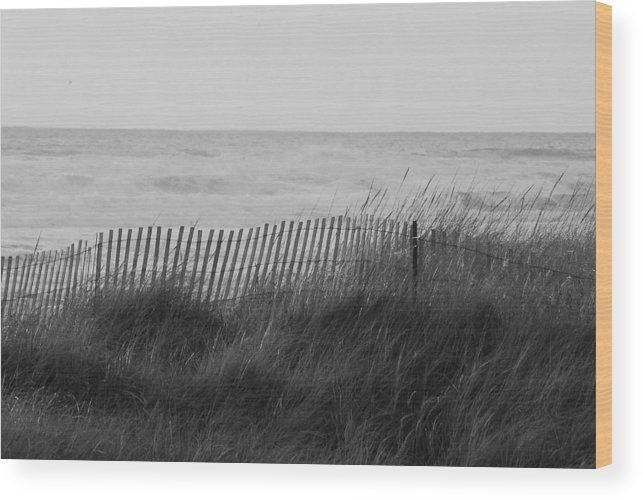 Wood Print featuring the photograph Westport Wa by JK Photography