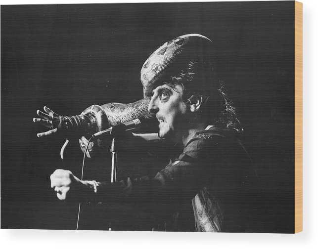 People Wood Print featuring the photograph Alice Cooper At Msg by Fred W. McDarrah