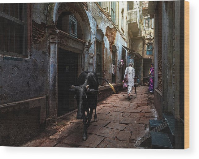 Varanasi Wood Print featuring the photograph Day In Varanasi by Fadhel Almutaghawi