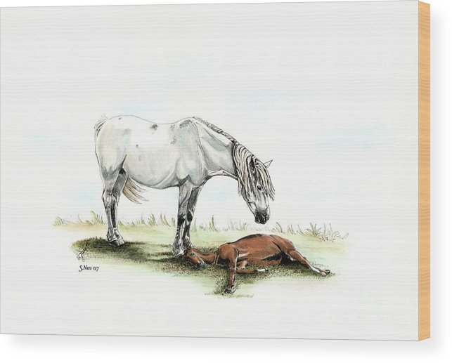 Horse Wood Print featuring the painting Mare And Foal by Shari Nees