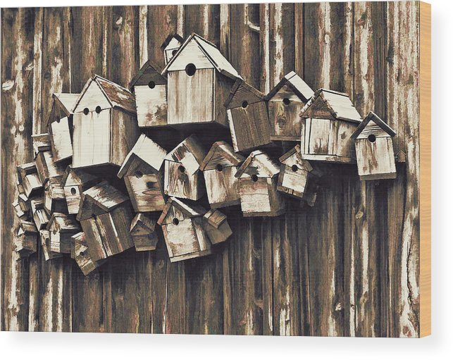 Architecture Wood Print featuring the photograph Birdhouse Condominium by Marcia Colelli