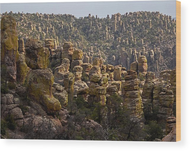Chiricahua National Park Wood Print featuring the photograph Chiricahua National Park - The Grotto 02 by George Bostian