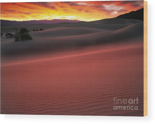 America Wood Print featuring the photograph Death Valley Sunrise by Inge Johnsson