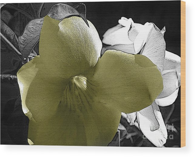 Flower Wood Print featuring the photograph Delicate Yellow by Leanna Rosato