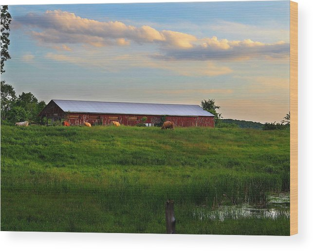 Field Wood Print featuring the photograph Hebron Ave Farm by Andrea Galiffi