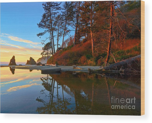 Landscape Wood Print featuring the photograph Lagoon Sunrise 1 by Don Hall