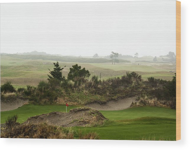 Bandon Dunes Wood Print featuring the photograph Links Of The Dunes by Dale Stillman