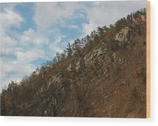 Mountain Wood Print featuring the photograph Look Up by Suzanne Gaff