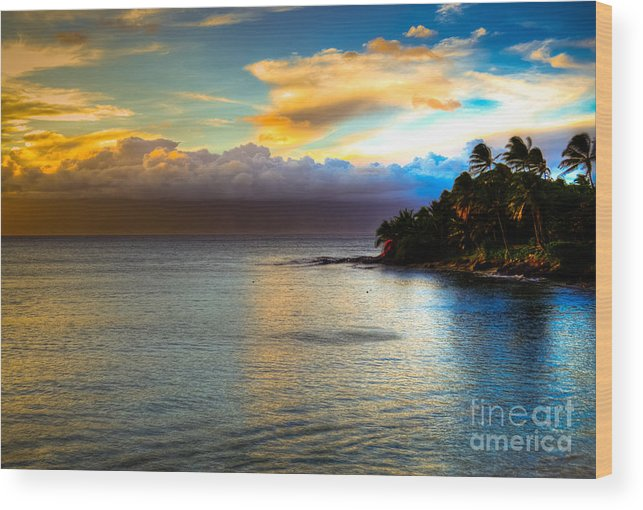 Maui Palm Trees Wood Print featuring the photograph Maui Palm Sunset by Kelly Wade