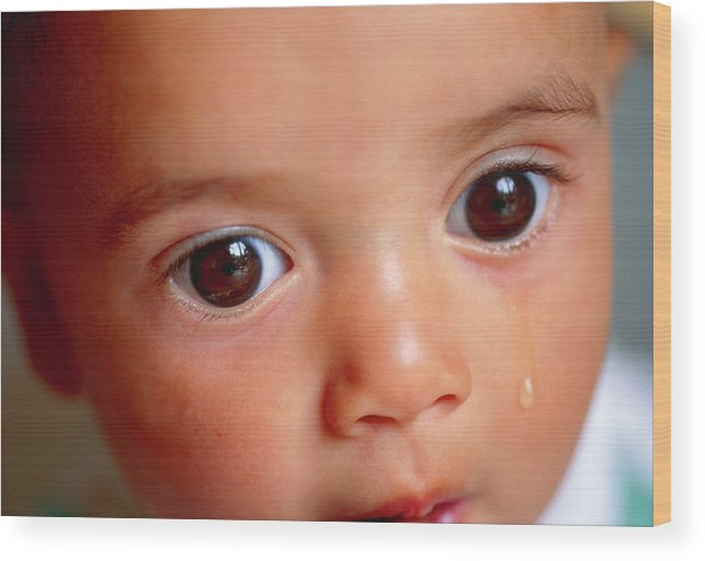 Tear Wood Print featuring the photograph Sad Infant by Eddie Lawrence/science Photo Library
