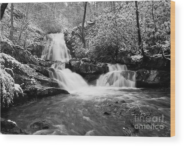 Water Wood Print featuring the photograph Spruce Flats Falls by Douglas Stucky