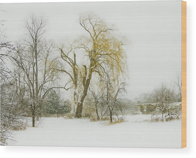 Winter Wood Print featuring the photograph The Old Shack by John Stuart Webbstock