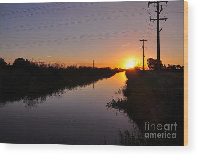 Photography Wood Print featuring the photograph Warm Rural Sunset by Kaye Menner