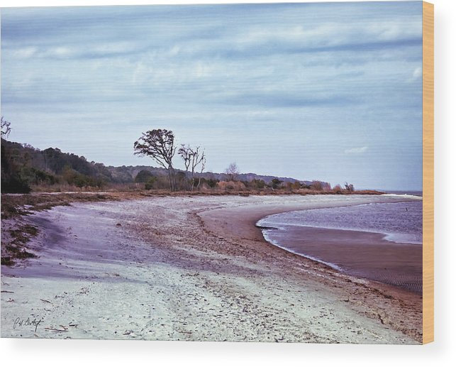 Beach Wood Print featuring the digital art Quiet Cove by Phill Doherty