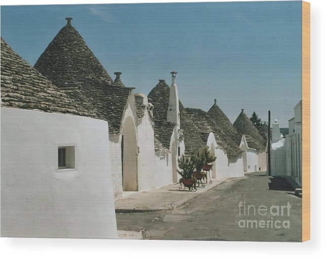 Puglia Wood Print featuring the photograph Alborebello by Andy Mercer