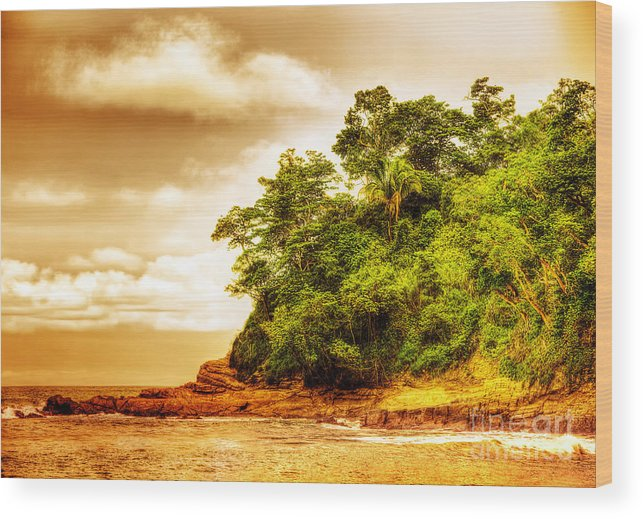 Manuel Antonio Wood Print featuring the photograph Sunset On The Beach Of Costa Rica by Anna Om