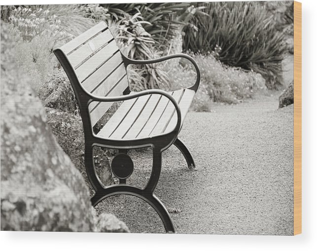 Bench Wood Print featuring the photograph Lone Bench In The Park. by Yurix Sardinelly
