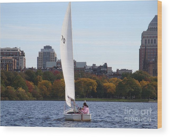 Charles River Wood Print featuring the photograph a day on the Charles by Robyn Leakey