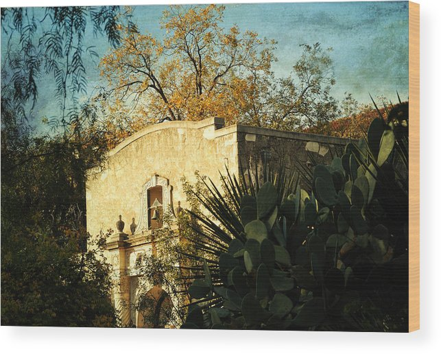 San Antonio Wood Print featuring the photograph Alamo Mission by Iris Greenwell