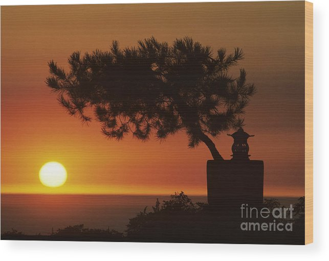 America Wood Print featuring the photograph California, Big Sur Coast by Larry Dale Gordon - Printscapes
